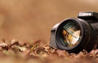 Photographer houston
